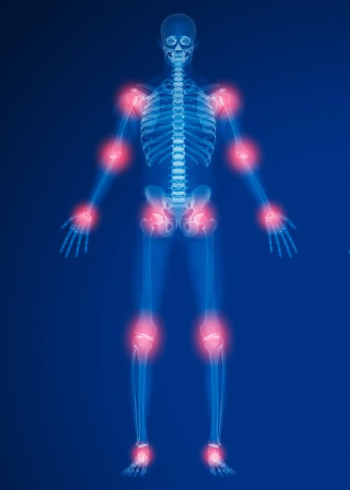 RS Labs Joint Health Body Anatomy 2 500x700 1